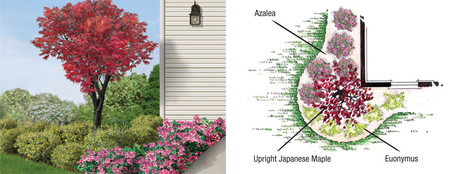 Landscape garden for Garden design with japanese maple