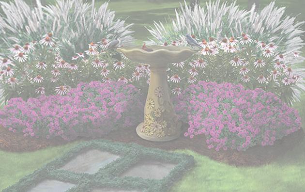 Pre Designed Perennial Gardens plant list Landscape Garden